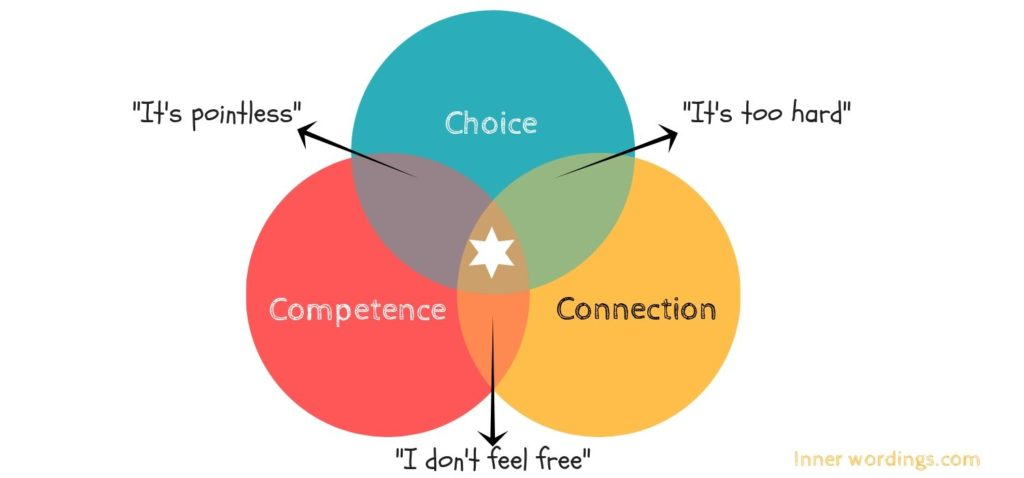 how choice, connection and competence affect your type of motivation